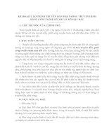 KẾ HOẠCH, LỘ TRÌNH TRUYỀN DẪN PHÁT SÓNG TRUYỀN HÌNH BẰNG CÔNG NGHỆ KỸ THUẬT SỐ MẶT ĐẤT