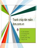 Thuyết trình môn luật cạnh tranh chủ đề tranh chấp tên miền imb.com.vn