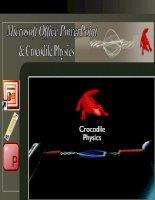 : Ứng dụng phần mềm Crocodile Physics kết hợp với Microsoft Office PowerPoint trong thiết kế và đưa thí nghiệm ảo vào bài giảng điện tử môn Vật lí (thể hiện qua một số bài giảng phần Cơ – Quang – Điện ở trường phổ thông).
