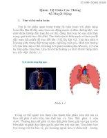 Quan hệ giữa các thông số huyết động
