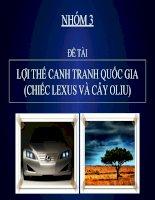 Lợi thế cạnh tranh quốc gia (chiếc lexus và cây oliu)