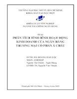 Phân tích tình hình hoạt động kinh doanh của ngân hàng thương mại cổ phần Á Châu