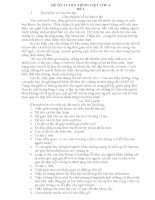 35 đề ĐỀ ÔN LUYỆN TIẾNG VIỆT LỚP 4
