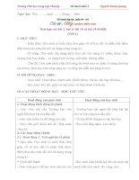 Giáo an mĩ thuật đan mạch soạn theo trường phái tích hợp từng chủ đề lớp 3