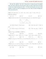 Bài tập trắc nghiệm toán lớp 3