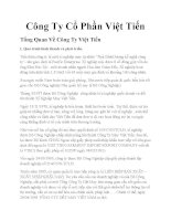 Phân tích môi trường cạnh tranh của công ty may Việt Tiến