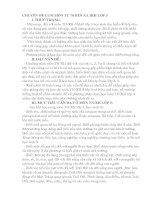 CHUYÊN ĐỀ CỤM MÔN TỰ NHIÊN XA HỘI LỚP 3