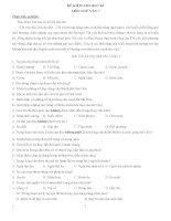 ĐỀ KIỂM TRA NGỮ VĂN  LỚP 7 CÓ TRẮC NGHIỆM VÀ TỰ LUẬN