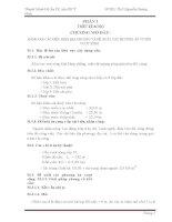 Đồ Án Thiết Kế Cầu Dầm Chữ I Giản Đơn BTCT Ứng Suất Trước 5 Nhịp 28m (Kèm Bản Vẽ CAD)