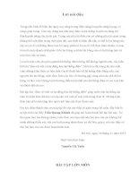 Bài tập lớn môn: BẢO VỆ RƠLE VÀ TỰ ĐỘNG HÓA HỆ THỐNG ĐIỆN