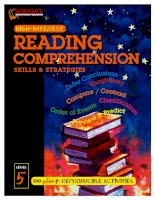 Reading comprehension skills  strategies level 5