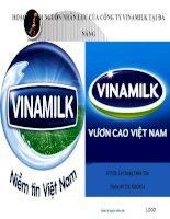 slide hoạch định nguồn nhân lực của công ty vinamilk tại đà nẵng