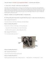 Giải bài 1,2,3,4 trang 85 SGK Sinh 11: Tuần hoàn máu (tiếp theo)