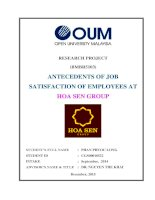 Antecedents of job satisfaction of employees at hoa sen group