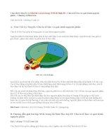 Giải bài 1,2,3,4 trang 75 SGK Sinh 10: Chu kì tế bào và quá trình nguyên phân
