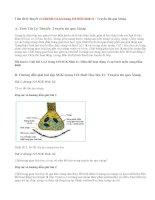 Giải bài 1,2,3,4 trang 123 SGK Sinh 11: Truyền tin qua Xináp