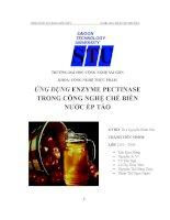 Ứng dụng enzyme pectinase trong công nghệ chế biến nước ép táo