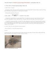 Giải bài 1,2,3,4,5,6 trang 39 SGK Sinh 11: Quang hợp ở thực vật