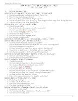 Đề cương ôn tập HKII Tin học 9