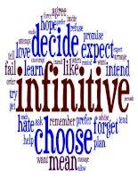 bài giảng slide về Verb infinitive and Gerund
