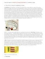 Giải bài 1,2,3 trang 22 SGK Sinh 10 : Cacbohiđrat và lipit