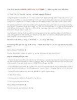 Giải bài 1,2,3,4 trang 19 SGK Sinh 9 : Lai hai cặp tính trạng (tiếp theo)