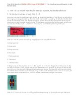 Giải bài 1,2,3,4 trang 60 SGK Sinh 8: Vận chuyển máu qua hệ mạch, vệ sinh hệ tuần hoàn