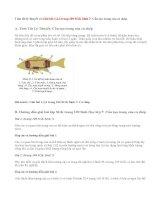 Giải bài 1,2 trang 109 SGK Sinh 7: Cấu tạo trong của cá chép