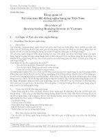 Tiểu luận tổng quan về tái cấu trúc hệ thống ngân hàng tại việt nam