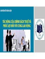 Chuyên đề tác động của chính sách thuế và phúc lợi đối với cung lao động