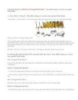 Giải bài 1,2,3 trang 98 SGK Sinh 7: Đặc điểm chung và vai trò của ngành Chân khớp