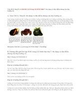 Giải bài 1,2,3 trang 122 SGK Sinh 7: Đa dạng và đặc điểm chung của lớp Lưỡng cư