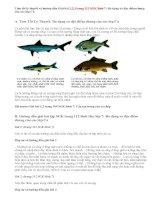 Giải bài 1,2,3 trang 112 SGK Sinh 7: Đa dạng và đặc điểm chung của các lớp Cá