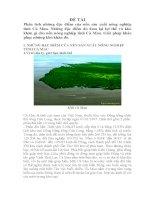 Phân tích những đặc điểm của nền sản xuất nông nghiệp tỉnh Cà Mau