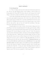 Đặc điểm nổi bật về nội dung tư tưởng và đặc sắc nghệ thuật của tạp văn Phan Thị Vàng Anh