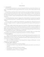 tóm tắt nghiên cứu so sánh nội dung chủ đề hình học trong chương trình và sách giáo khoa toán tiểu học của việt nam và singapore