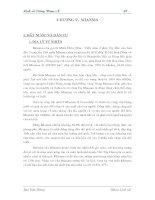Giáo trình lịch sử đông nam á (tái bản lần thứ nhất có sửa chữa và bổ sung)  phần 2