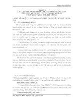 NÂNG CAO HIỆU QUẢ SỬ DỤNG VỐN LƯU ĐỘNG TẠI CÔNG TY CỔ PHẦN QUẢN LÝ VÀ XÂY DỰNG ĐƯỜNG BỘ 234