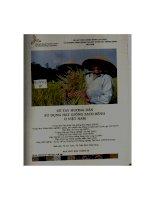 Sổ tay hướng dẫn sử dụng hạt giống sạch bệnh ở việt nam
