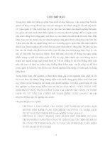 VẬN DỤNG THỬ NGHIỆM cơ bản TRONG KIỂM TOÁN tài CHÍNH tại CÔNG TY TNHH DỊCH vụ tư vấn tài CHÍNH kế TOÁN KIỂM TOÁN (AASC)