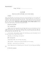 Chuyên đề sinh hoạt sư phạm môn toán nhóm khối lớp 3