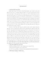 Hoàn thiện phân tích tài chính Ngân hàng Đầu tư và Phát triển Việt Nam