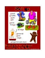Soft g   phonics poster