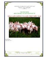Thuyết minh báo cáo đầu tư xây dựng dự án trại lợn giống và lợn thịt siêu nạc