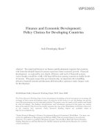Finance and Economic Development Policy Choices for Developing Countries
