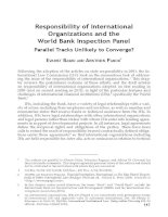 Responsibility of International Organizations and the World Bank Inspection Panel Parallel Tracks Unlikely to Converge?
