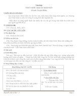 Giáo án Ngữ văn 9 bài 8: Thúy Kiều báo ân báo oán (trích Truyện Kiều)