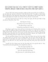 Bài văn mẫu lớp 11: Bàn về vẻ đẹp của chị em Thúy Kiều
