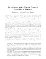 Developments in Climate Finance from Rio to Cancun