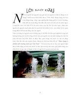 Tiểu luận thực trạng ô nhiễm môi trường nước tại việt nam